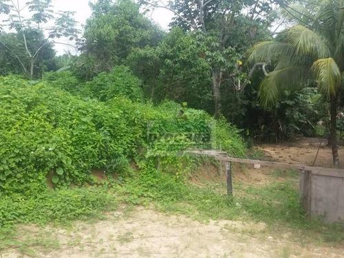 Terreno À Venda, 300 M² Por R$ 110.000,00 - Flores - Manaus/am - Te0163