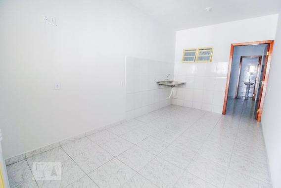 Apartamento Para Aluguel - Chácara Do Governador, 1 Quarto, 35 - 893017618