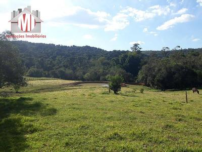 Terreno Rural À Venda, Pedra Bela, Pedra Bela. - Te0113