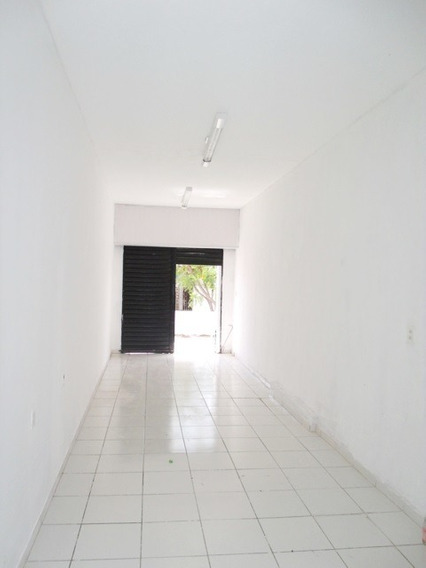 Aluguel Loja Na Avenida Oliveira Paiva