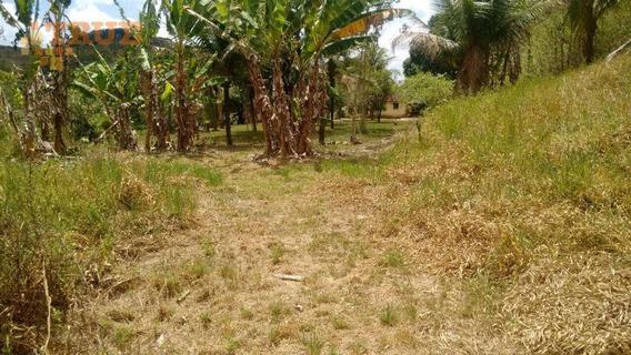Área À Venda, 150000 M² Por R$ 500.000 - Tabatinga - Igarassu/pe - Ar0019