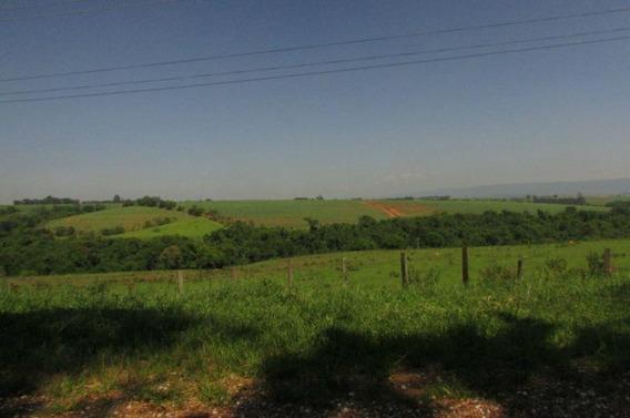 Sítio Rural À Venda, Córrego Da Onça, Charqueada - Si0002. - Si0002