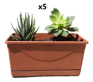 5 Macetas Jardinera Plástico Miniatura, Jardinera Pequeña