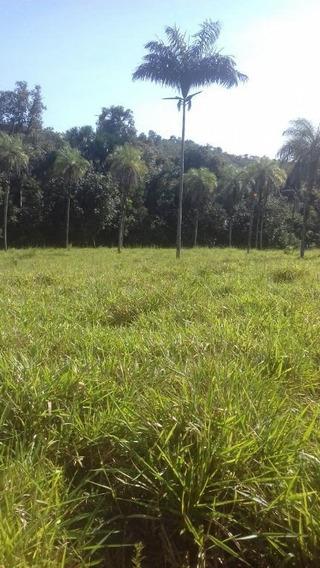 Fazenda Rural À Venda, Zona Rural, Conceição Do Tocantins. - Fa0144