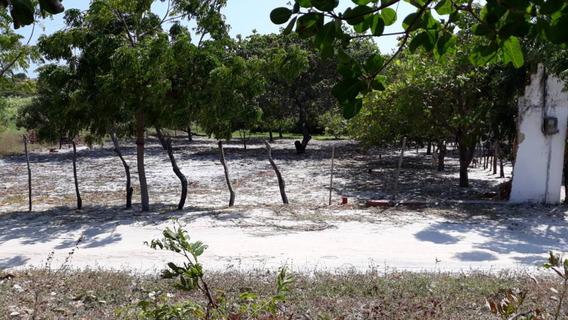 Terreno A 5 Minutos Da Praia Da Caponga Documentado 950m2