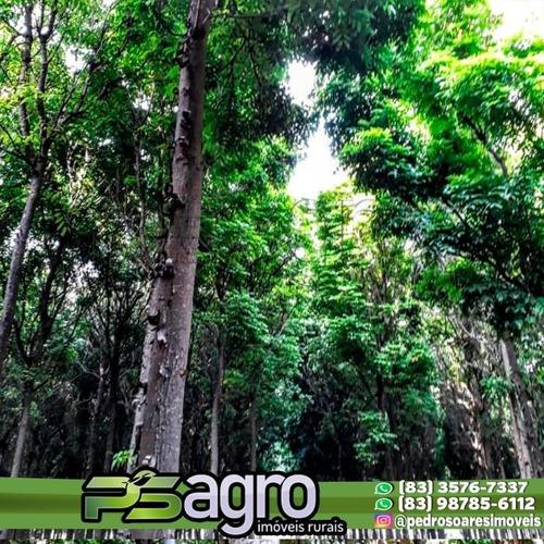 Imagem 1 de 5 de Sítio Em Janaúba-mg Com 12 Ha De Mogno Amazônico - Si0005