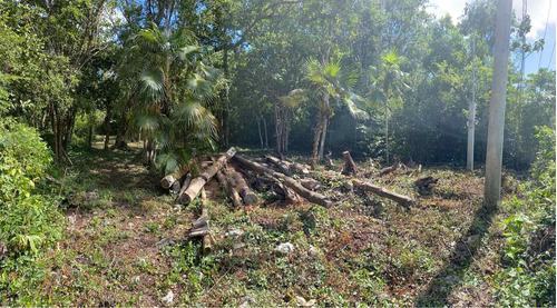 Imagen 1 de 6 de Terreno En Tulum La Veleta Región 9 Contra Esquina Gipsy Mar
