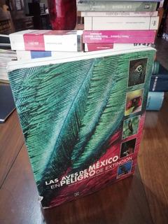Las Aves De México En Peligro De Extinción - Caballos