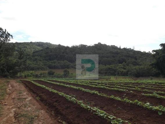Vendo Sitio Na Cidade De Biritiba Mirim - Si0001