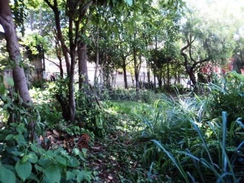 Imagem 1 de 4 de Terreno À Venda Em Parque Das Universidades - Te018301