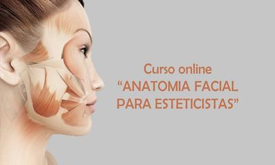 Curso De Anatomia Facial Para Esteticistas