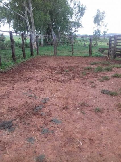 Fazenda Em Piumhi-mg - 1336