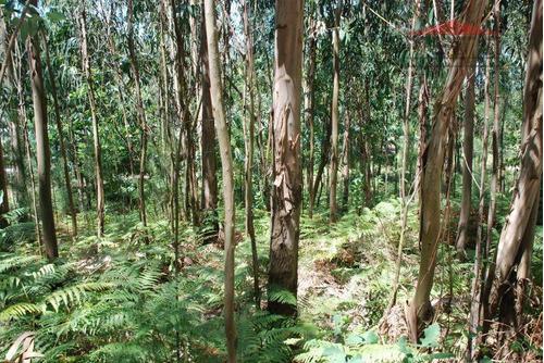 Imagem 1 de 2 de Fazenda Para Venda Em Juquitiba, Centro - Fa0002_1-1023764