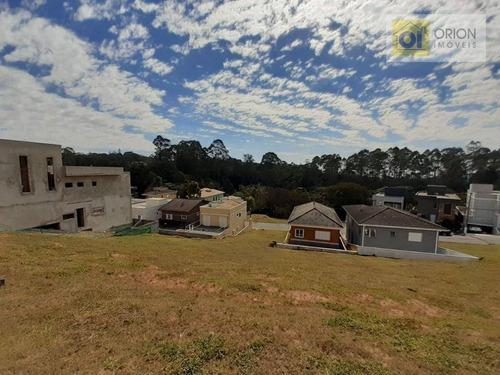 Imagem 1 de 10 de Terreno À Venda, 250 M² Por R$ 300.000 - Quintas Do Ingaí - Santana De Parnaíba/sp - Te1268