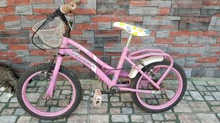 Bicicleta Olimpia Rodado 14 Para Nenas. La Mejor!!