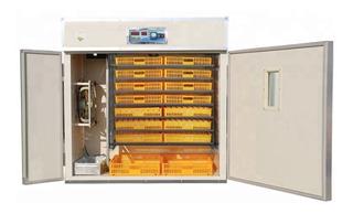 Incubadora Nacedora 1056 Huevos, Volteo Automático Hy 1056