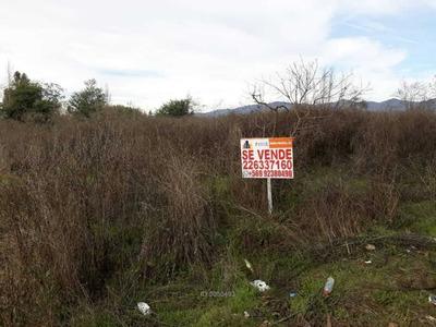 Sitio Disponible En Sector Rural De Chép