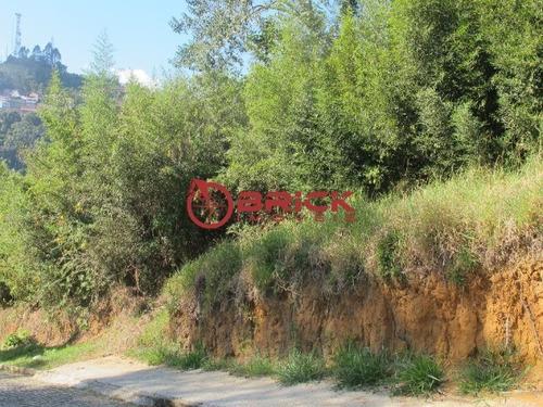 Imagem 1 de 2 de Terreno Com 1.050 M² No Centro Da Cidade. - Te00108 - 32674125