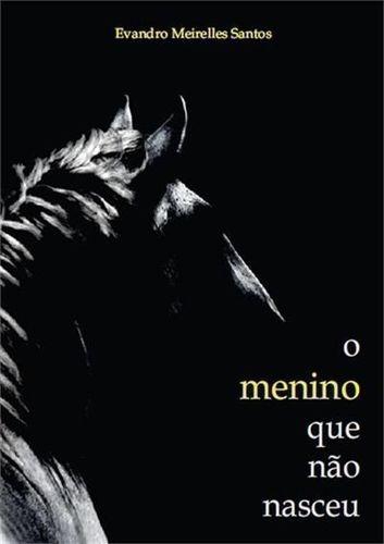 Livro O Menino Que Não Nasceu Evandro Meirelles Santos