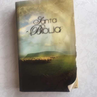 Santa Biblia Reina Valera Chécala