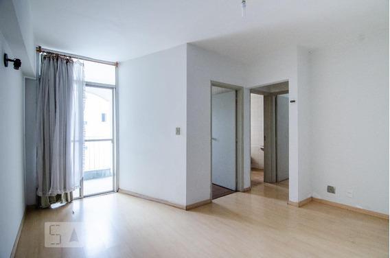 Apartamento Para Aluguel - Vila Itapura, 1 Quarto, 55 - 893020412