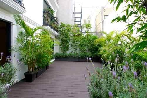 Garden En Polanco .