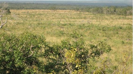 Fazenda Em Lizarda - To, Dupla Aptidão - 263