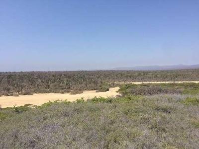 Hectáreas En Venta En La Ventana, Baja California Sur