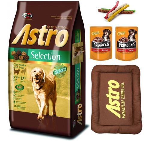 Imagen 1 de 2 de Comida Perro Astro Selection 17kg Con Colchoneta