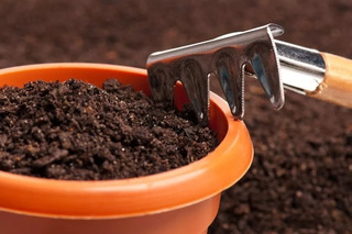 Elaboracion Uso Y Manejo De Abonos Organicos | Guia