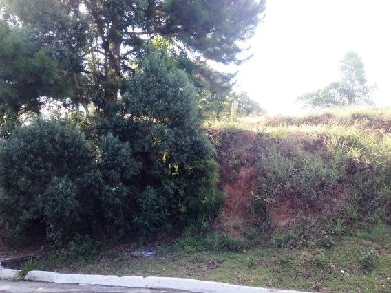 Terreno Em Jardim Maria Tereza, Cotia/sp De 0m² À Venda Por R$ 220.000,00 - Te120745