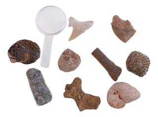 Minerales Minerales Naturales De La Piedra Preciosa Del