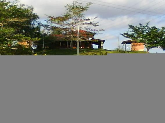 Fazenda Com 370 Ha Para Investidor A 100 Km De Salvador
