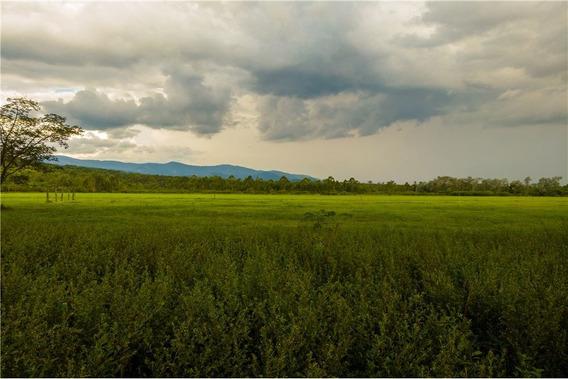 Re/max Noa Ii Vende Terreno En El Algarrobal
