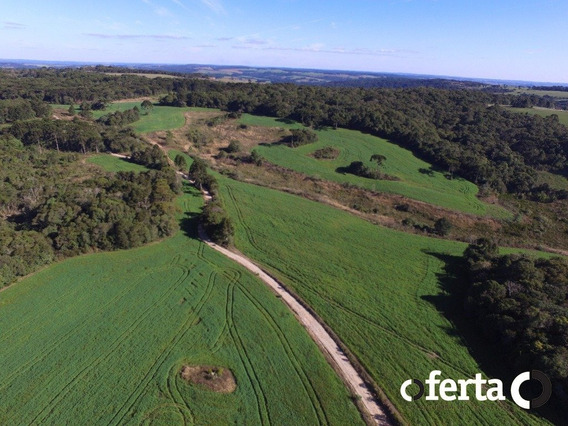 Fazenda - Centro - Ref: 45 - V-45