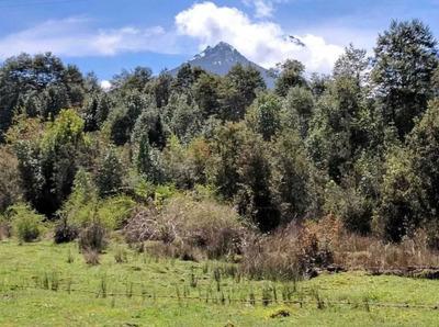 160.027 - Parque Nacional Hornopiren