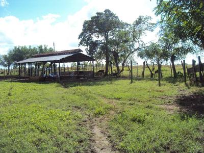 Finca Ganadera Y Agricola En Monte Plata, Bayaguana