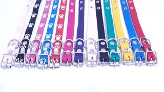 10 Collares Para Perros Pequeños