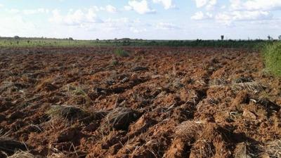 Fazenda A Venda Em Tupirama -to (agricultura) - 760