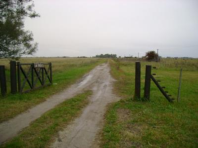Campo 60 Hectáreas Sobre Ruta