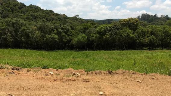 Rt Terrenos Ecológicos Plainos