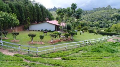 Sitio Á Venda Em Ibiuna Sp