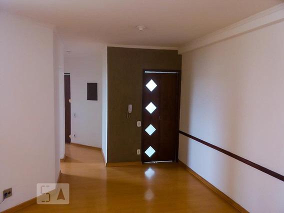 Apartamento Para Aluguel - Picanço, 2 Quartos, 53 - 893053648