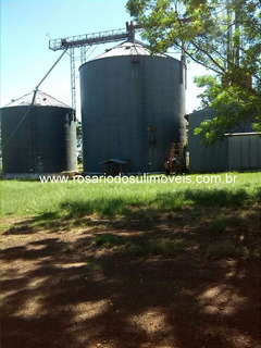 Fazenda Com 4800 Ha Para Lavoura Entre São Borja E Santiago