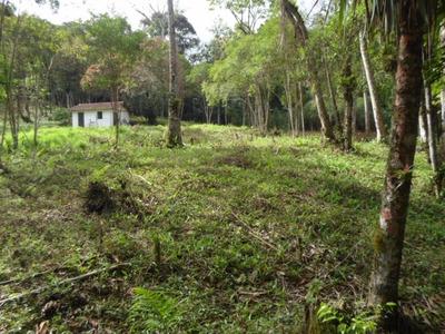 Juquitiba - Sitio/pasto/bosque/riacho/mata Ref: 04192