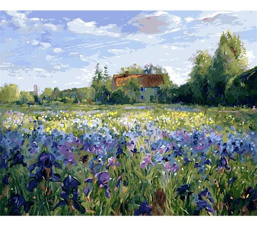 Pintura Numerada Campos De Flores -  Coleção Van Gogh_p2