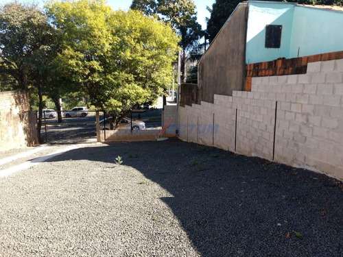 Imagem 1 de 9 de Terreno Para Aluguel Em Parque Jambeiro - Te283306