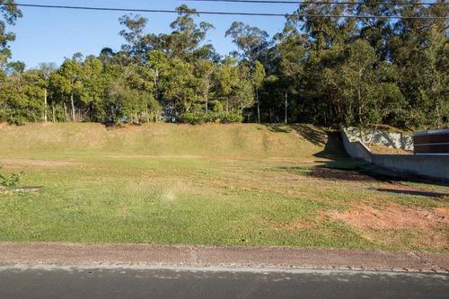 Terreno Em Belém Novo - Lu429223