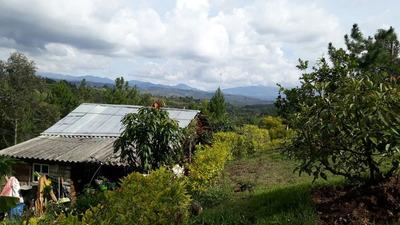 Finca Para La Venta En Popayán Cauca.