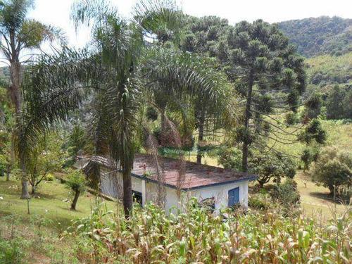 Imagem 1 de 30 de Chácara Com 2 Casas À Venda, 4000 M² Por R$ 550.000 - Zona Rural - Santo Antônio Do Pinhal/sp - Ch0095